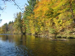 7. River